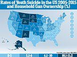 Teenage suicide rate are highest in states where gun ownership is too