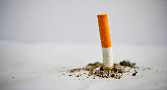 Administration May Force Nicotine Reduction in Cigarettes