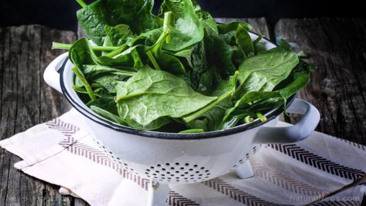 A sugar found in leafy greens promotes gut health, new study concludes