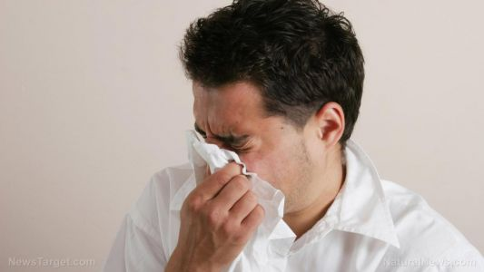 Do you sneeze every day when you wake up? It is probably your immune system getting ready for the day