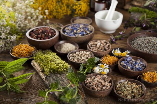 More people are turning to herbal treatments as dissatisfaction with conventional medicine increases