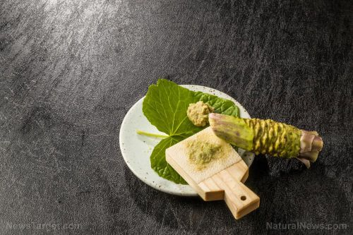 Sushi lovers, rejoice: Wasabi can help prevent cancer