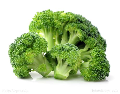 New study confirms broccoli to be extremely effective at battling liver cancer
