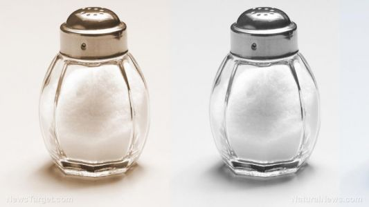 Don't cut salt completely: Study discovers that high-salt diets inhibit tumor growth