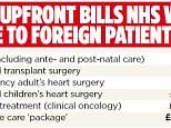 Victory for Mail on Sunday as hospital 'hit squads' target NHS health tourists