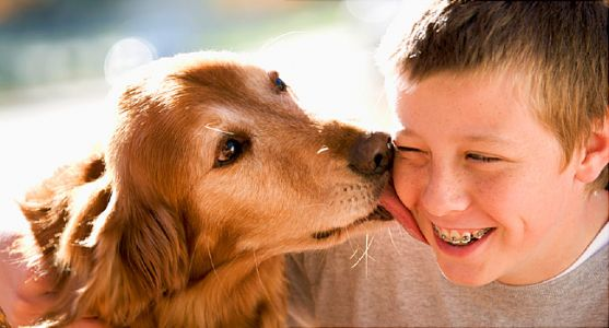 Can Dogs Keep Kids from Getting Allergies?