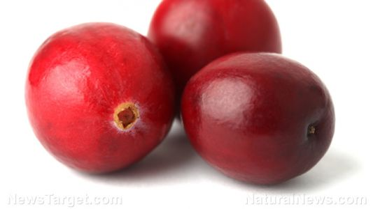 Natural remedy for arthritis pain? Women who drink cranberry juice experience reduced joint pain