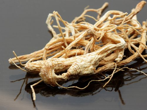 Chinese ginseng can be used to treat acute pancreatitis