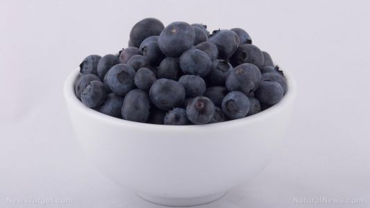 Eating blueberries reduces heart disease risk, study confirms