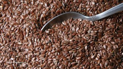 10 Healthy reasons to add flax seed to your diet