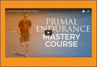 Introducing the Primal Endurance Mastery Course!