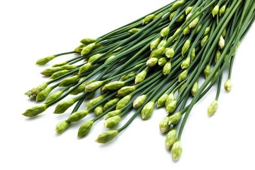 Erectile dysfunction? Take maca root and Chinese chives, says study