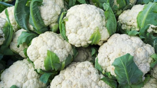 E. Coli Recall Now Includes Cauliflower And Other Leafy Greens