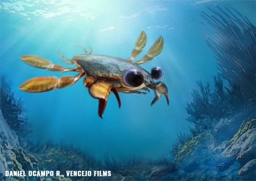 """Researchers discover """"beautiful nightmare"""" crab with giant eyes and the shell of a lobster"""