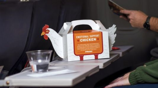 Popeye's Has TSA-Approved 'Emotional Support Chicken' For Your Holiday Travel
