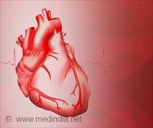 Heart Cells may Increase Survival in Heart Attack Patients