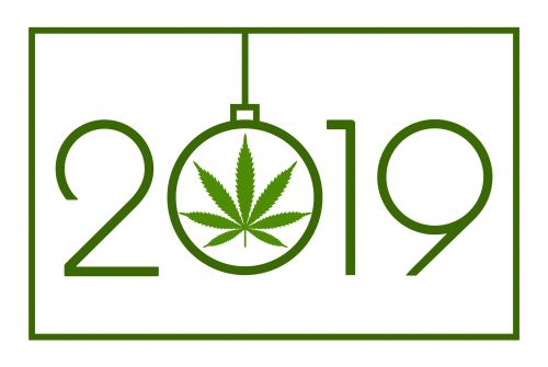 NPA review of 2019: CBD Goes Mainstream
