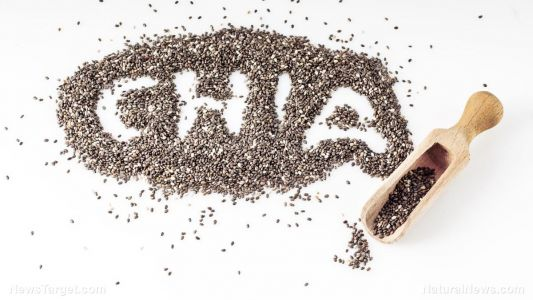 7 ways chia seeds boost your health