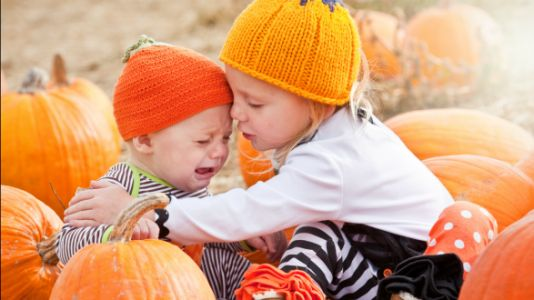 11 Reasons Pumpkin Patches Are The Worst