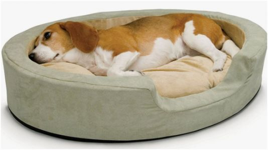 These Heated Beds Will Keep Your Pets So Cozy This Winter