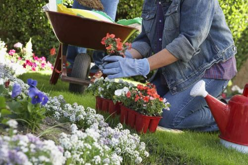 Three Ways Gardening Makes You Happy
