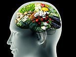 Scientists discover a 'switchboard' for hunger in the brain
