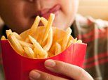 Researchers identify link between obesity and dulled sense of taste