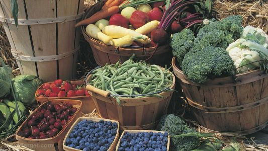 Fresh, organic food at your fingertips: 7 Tips for shopping at a farmers market