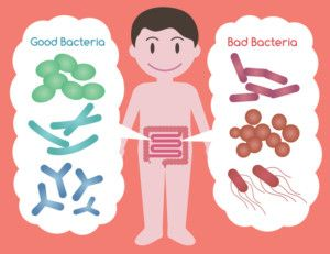 Best Probiotics For Irritable Bowel Syndrome : Explained in Plain English