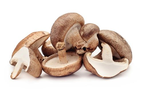 How a Certain Type of Mushroom Can Help You Stay Healthy This Winter