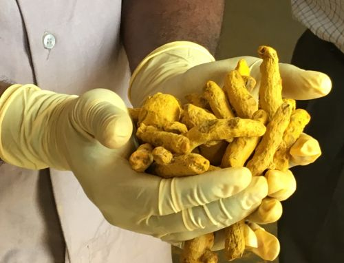 Sabinsa curcumin ingredient cuts inflammation in brain injury study