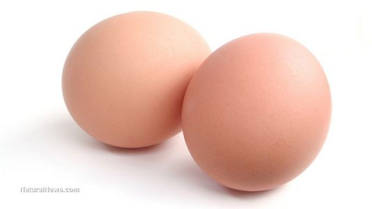 Scientists say eating eggs for breakfast will help boost brain functions