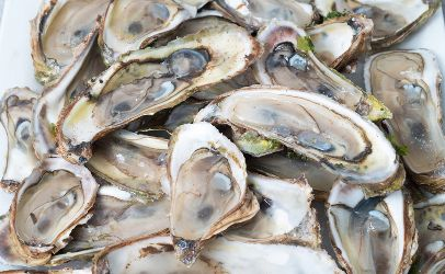 U.S. joins Canada in investigation of outbreak linked to oysters