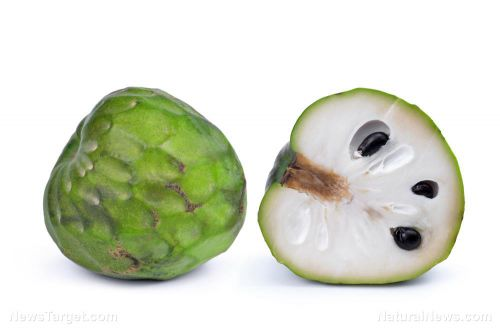 A tropical fruit found to be an effective natural fruit fly killer