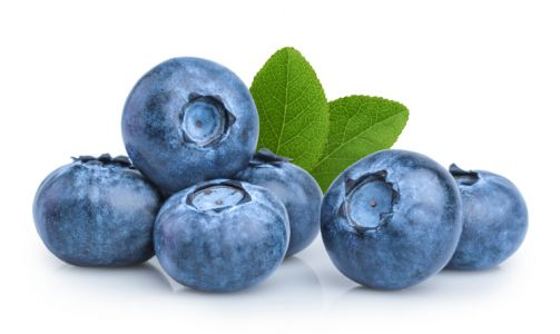 Single dose of blueberry polyphenols boosts cognitive performance in middle aged adults