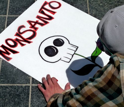 Monsanto hit with $290 million cancer liability ruling in Roundup herbicide trial