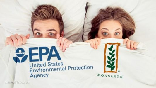 EPA official whitewashed glyphosate links to non-Hodgkin lymphoma in order to protect Monsanto profits