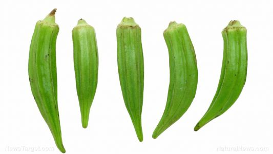 Eating okra is an easy way to boost your immune system