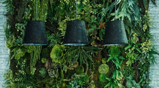 Survivalist skills: Make your own lamp from available materials