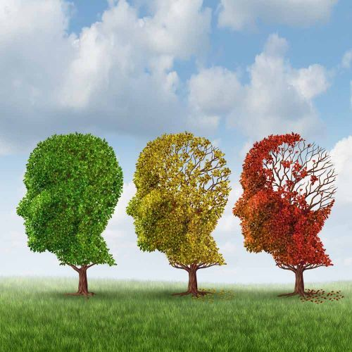 12 Factors that May Lower Your Risk of Developing Alzheimer's Disease