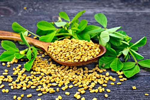 Naturally manage your blood cholesterol with fenugreek seeds