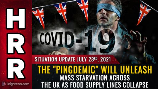 """""""PINGDEMIC"""" insanity: UK government commits nation to starvation suicide by commanding food sector workers to self-quarantine. supply chain """"at risk of collapse"""""""