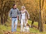 How walking faster really WILL improve your heart health and help you live longer, study finds