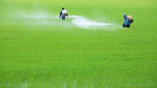Top SEVEN cancer-causing chemicals in American food
