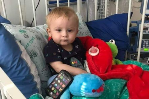 'Our precious baby son will die without an urgent transplant'