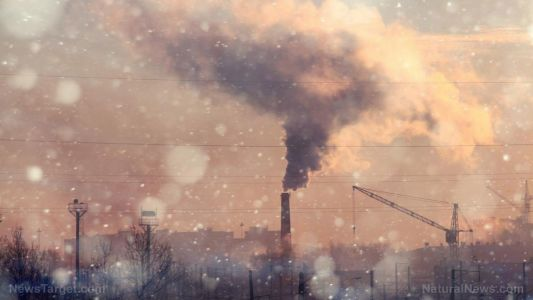Technical solutions for pulling pollution out of the air are distractions that allow both government and industry to keep polluting
