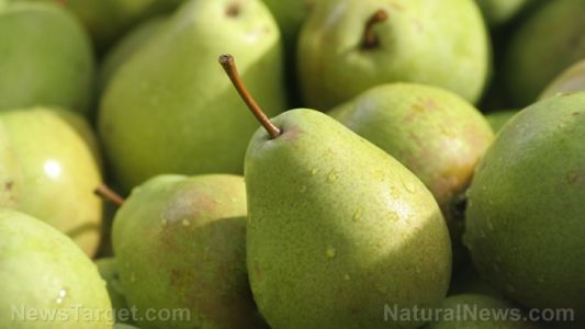 Why you should eat pears: A nutrient review