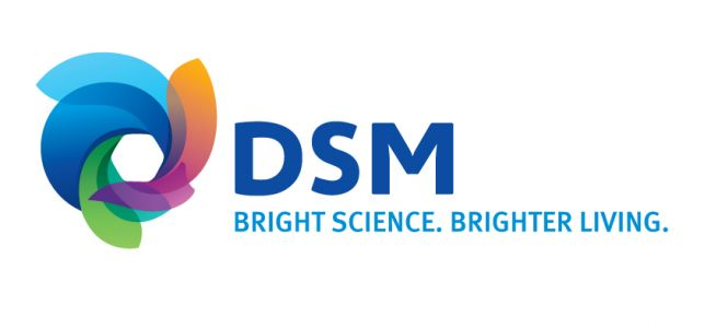 DSM lodges patent infringement law suit in China; seeks monetary damages
