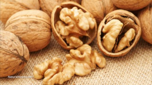 Study reveals: Men should eat walnuts to prevent prostate cancer