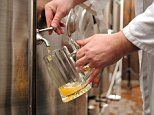 Pharmaceutical lab forced to stop brewing BEER next to drug-testing equipment